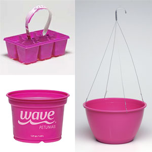 Wave packaging - Wave petunias in containers ...